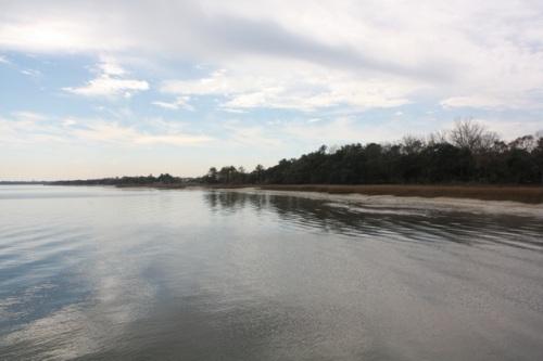 Daniel Island - Charleston - Alesya Bags