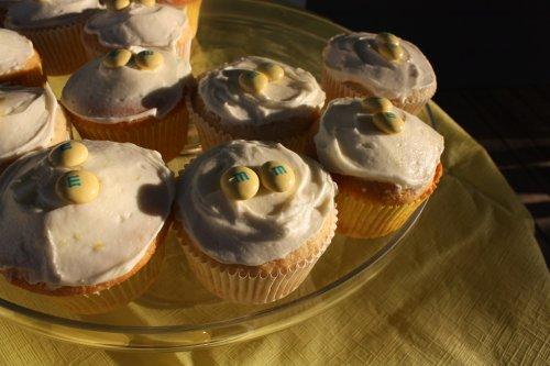 Lemon Real Simple Cupcakes - Alesya Bags
