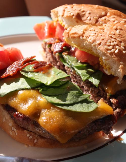 Cut Burger  - Alesya Bags