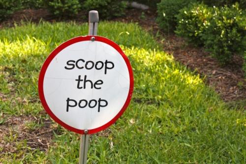 Scoop the Poop - Alesya Bags